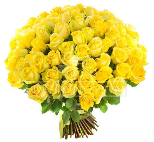 Доставка цветов и букетов Букет из 101 желтой розы