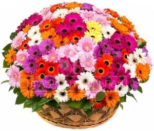 Доставка цветов и букетов Корзина из 101 герберы
